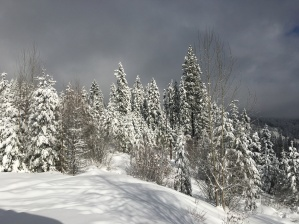 Snow in the Kootenays!